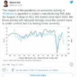 The impact of the pandemic on economic activity